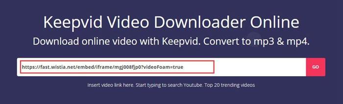 Wistia video downloader